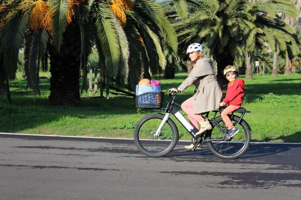 ahooga modular bike